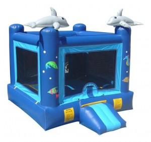 Dolphin Jumper Rentals